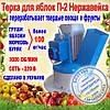 Кормоизмельчитель фруктов и овощей П-2 нержавейка (электротёрка для яблок, буряка, картофеля)