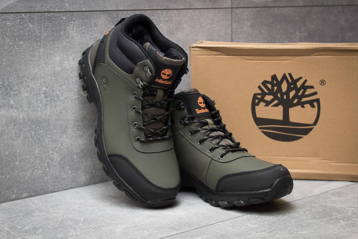 8ccdd2b3f54a Мужские зимние кроссовки в стиле Timberland Canard Oxford, хаки. Код  товара  KW -