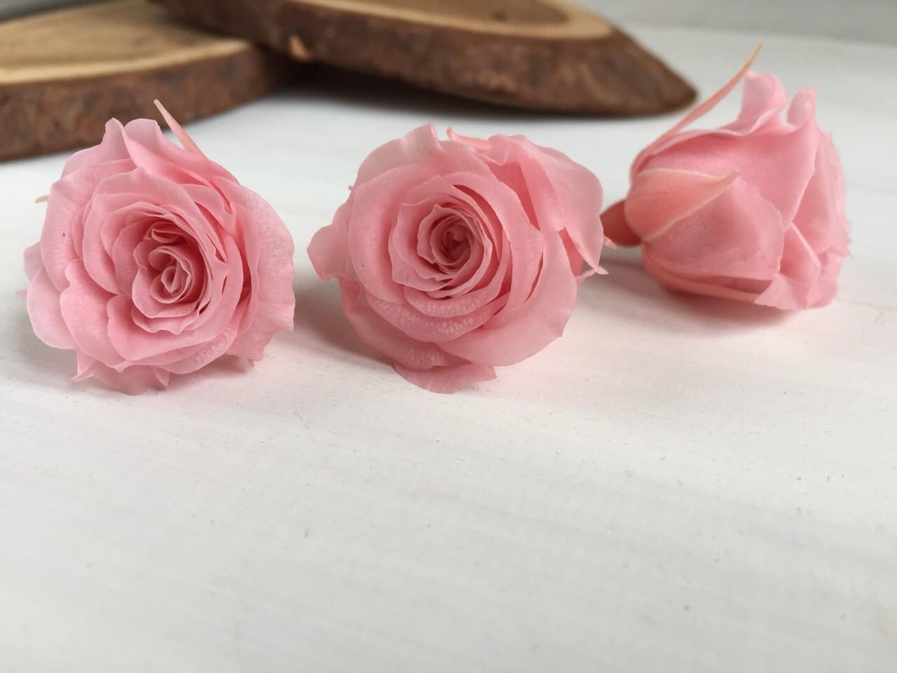 Роза стабилизированная , цвет розовый