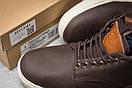 Зимние ботинки  на меху Timberland Groveton, коричневые (30113) размеры в наличии ► [  41 46  ], фото 6