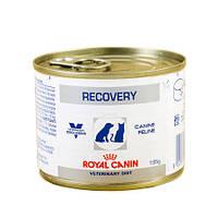 Royal Canin Vet консерва 195 г RECOVERY лечебный корм для собак и кошек в период после болезни