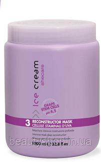 Inebrya Shecare Reconstructor Mask Маска для волос восстанавливающая, 1000 мл