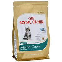 Royal Canin CAT   400 г MAINE COON KITTEN  корм для котят породы мейн кун