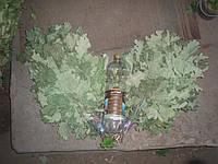 Где купить веник банный? Цены на веники дубовые Выбрать веник Цена на веники для бани, дуб, сосна.