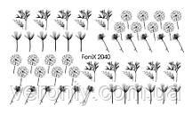 Слайдер-дизайн Fonix 2040 Цветы