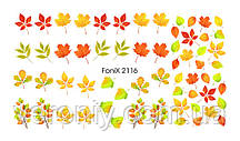 Слайдер-дизайн Fonix 2116 Цветы