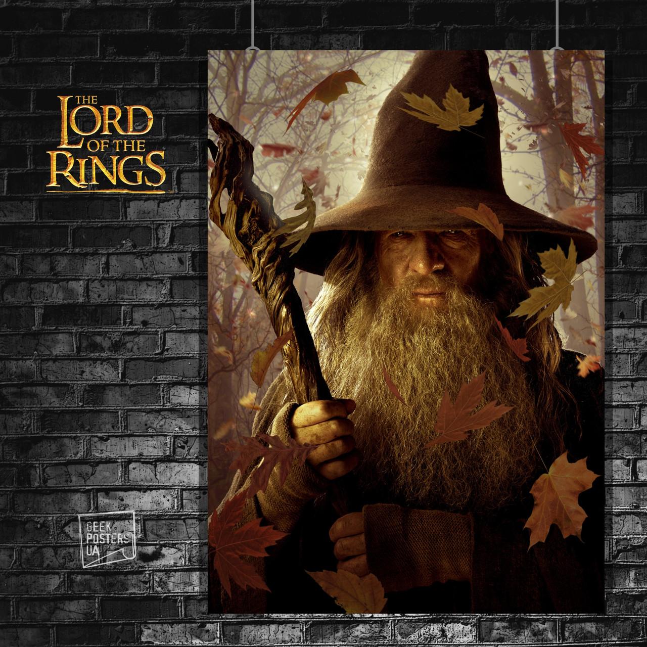 Постер Властелин Колец, Lord Of The Rings, Хоббит, Hobbit, LOTR. Размер 60x41см (A2). Глянцевая бумага