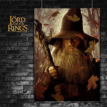 Постер Властелин Колец, Lord Of The Rings, Хоббит, Hobbit, LOTR. Размер 60x41см (A2). Глянцевая бумага, фото 2