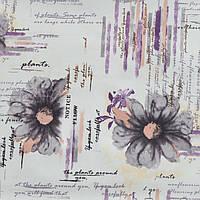 Дора цветы фиолетовые
