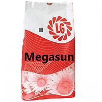 Насіння соняшника Мегасан Лімагрейн