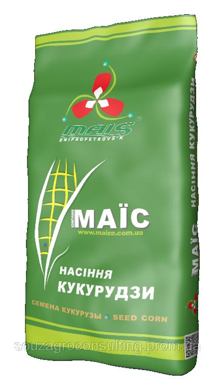 Насіння кукурудзи Сплав МС ФАО 290 | Маїс