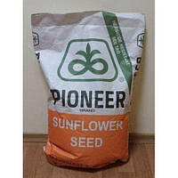 Семена подсолнуха Пионер П64ЛЕ25