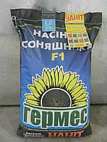 Насіння соняшника Антей Екстра Гермес (Семена подсолнуха Антей), фото 1
