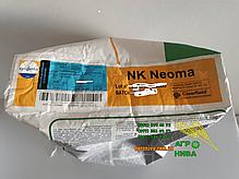 Семена подсолнуха НК Неома Syngenta, фото 2