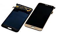 Модуль Samsung J320F/J320H Galaxy J3 (2016) gold (#532) .z