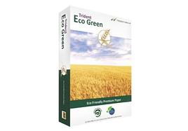 Trident ECO GREEN  A4 75г/м, 500 листов