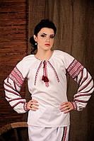 Вышиванка женская с длинным рукавом. Жіноча блуза Модель:ЖБ-11-143