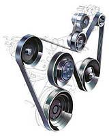 Ремни приводные, ролики и натяжители генератора Skoda