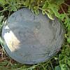 Семена бессемянного арбуза Донован F1 500 семян Hazera