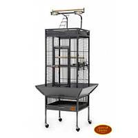Вольер для крупных попугаев и птиц ™️ Золотая Клетка (48х48х156 см)