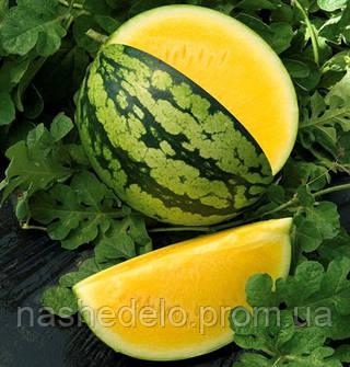 Семена арбуза желтого Голден Грейс F1 500 семян Hazera