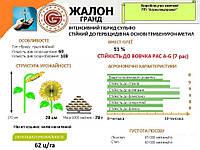 Семена подсолнечника Жалон Гранд А-G под грандстар