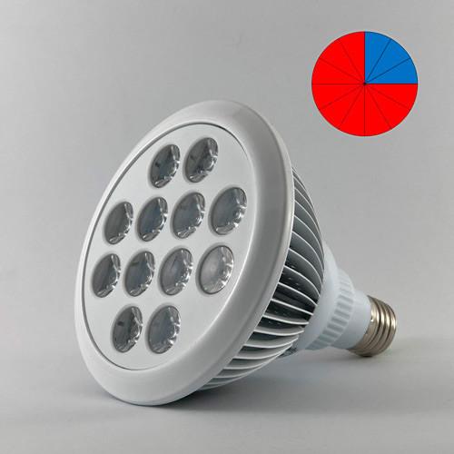 Фитолампа светодиодная 36W E27 (Биколор - 9:3)