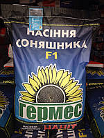 Антей ТД-Гермес экстра под Гранстар Экспресс семена подсолнечника высокоурожайный пластичный гибрид