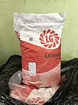 Семена подсолнечника ЛГ 5580 LG 5580