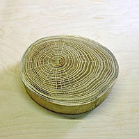 Срез (спил) шлифованный без коры 14-16см