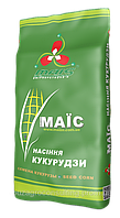Насіння кукурудзи Штандарт ФАО 400   Маїс
