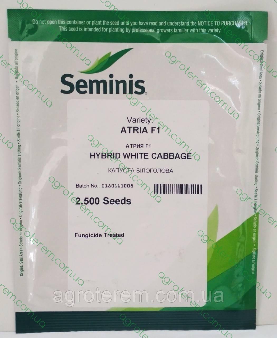 Семена капусты Атрия ATRIA F1 2500 с
