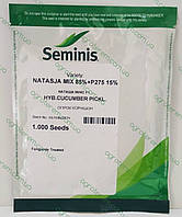 Семена огурца Наташа NATASJA mix F1 1000с, фото 1