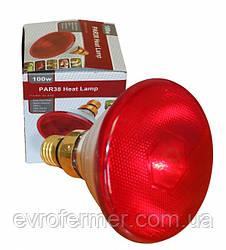 Інфрачервона лампа PAR38 100W для обігріву тварин