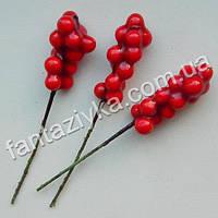 Красная ягода шефердия на проволоке 30мм