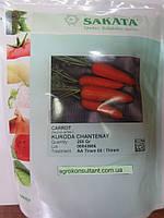 Семена моркови Курода Шантане F1, 250 г, фото 1