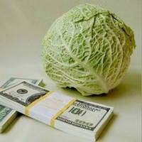 Как зарабатывать в аграрном секторе