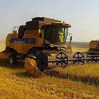 Прогноз урожая зерновых в Украине в 2017/18 МГ