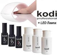 """Стартовый набор для покрытия ногтей гель лаком Kodi с лампой SUN 9S 24 w """"№ 19"""""""