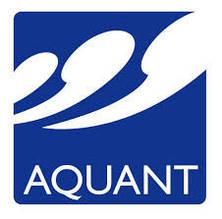 Закладные элементы Аquant
