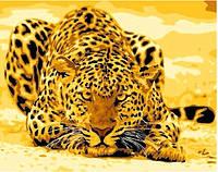 """Картина раскраска по номерам на холсте """"Леопард"""", КН305, 40х50см"""