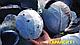 Семена капусты Гаранси F1 1000 семян Clause (Клоз) , фото 3