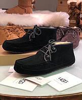 Зимние мужские мокасины на шнуровке UGG