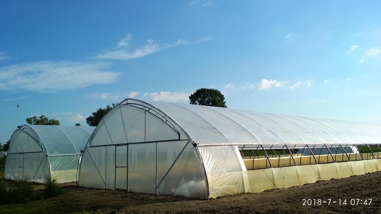 Теплицы для бизнеса фермерские промышленные из пленки 10х50 м на заказ