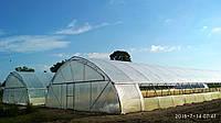 Теплицы для бизнеса фермерские промышленные из пленки 10х50 м на заказ, фото 1