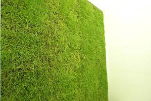 Вертикальный газон — рабочие процессы