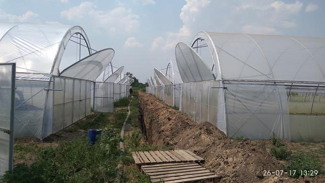 теплицы фермерские промышленые в днепропетровской области