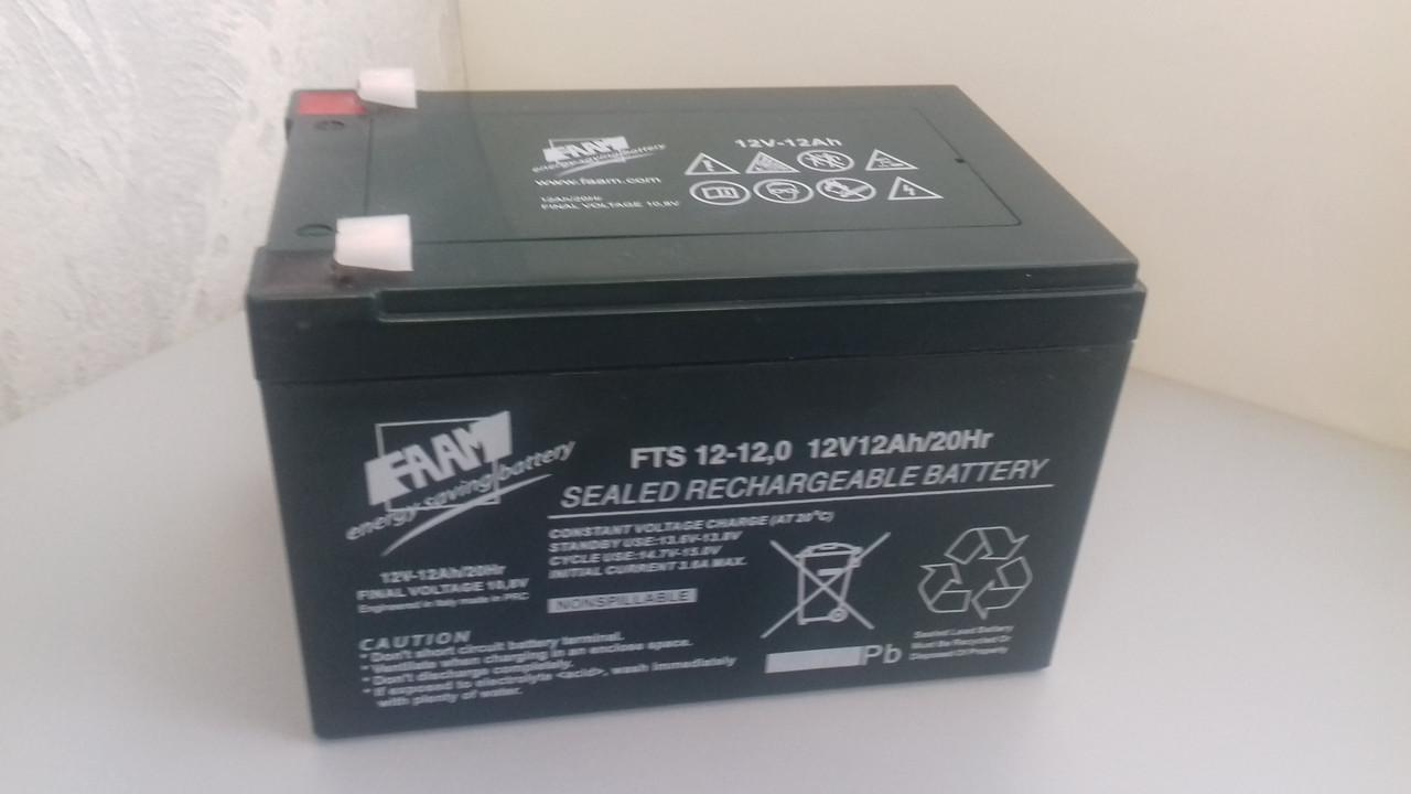Аккумуляторная батарея FAAM FHP 12-100