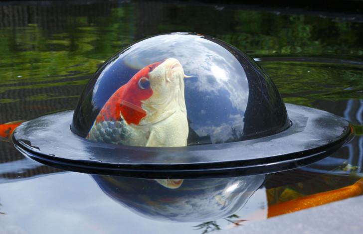 Плавающий купол для рыб Velda Floating Fish Dome, Ø 35