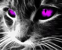 Картина по номерам 40×50 см. Кошачьи глаза